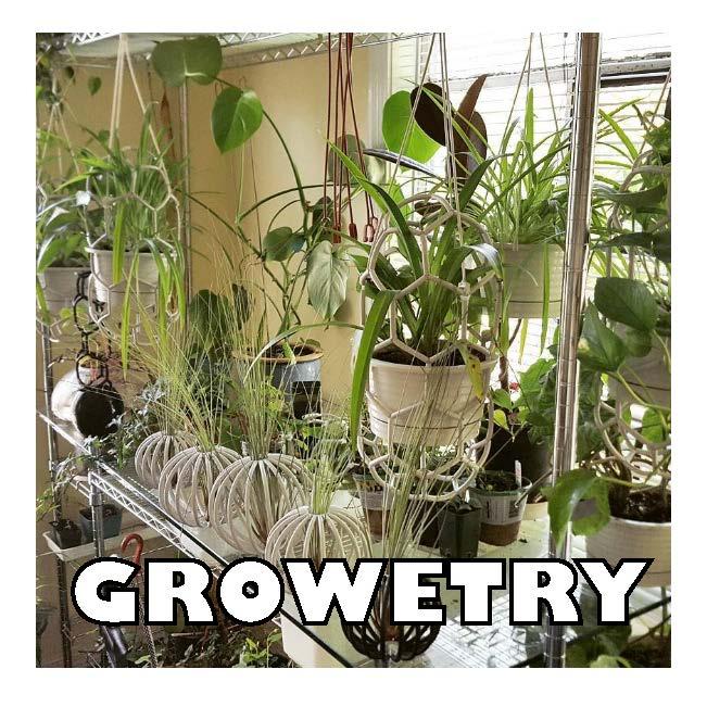 GROWETRY.jpg