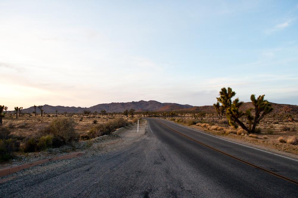 SR_Road_Trip_Wk3-7.jpg