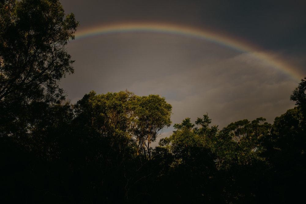 gold-coast-photographer-www.nicolehumphrey.com.au