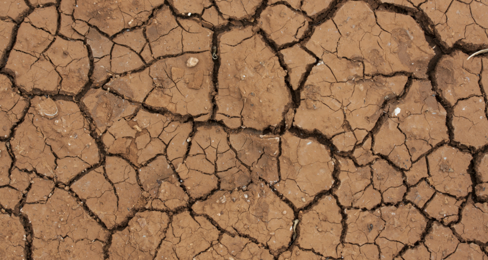 Dry desert.png