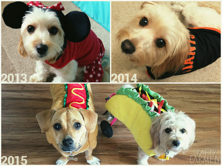2013-2015 Halloweens with Ellie & Kingston