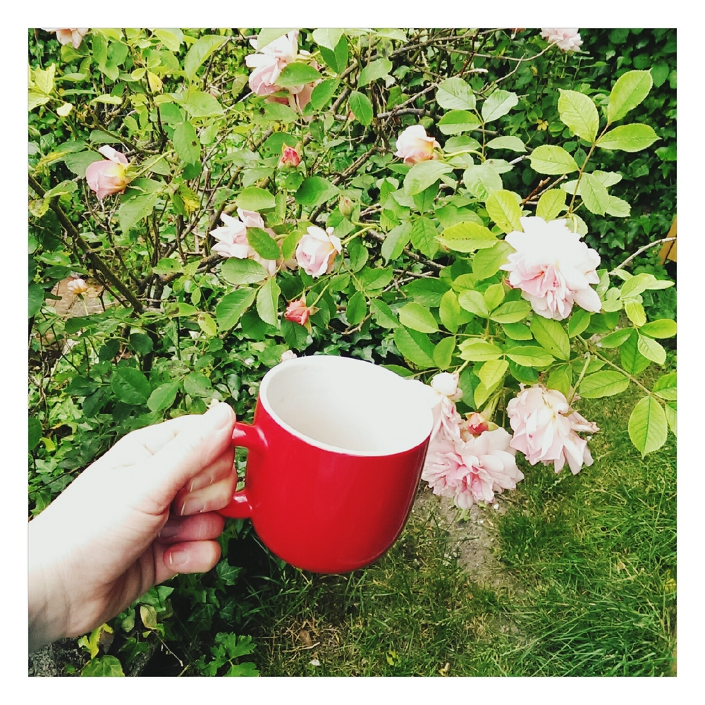 drinking tea with bybethany - rubelle
