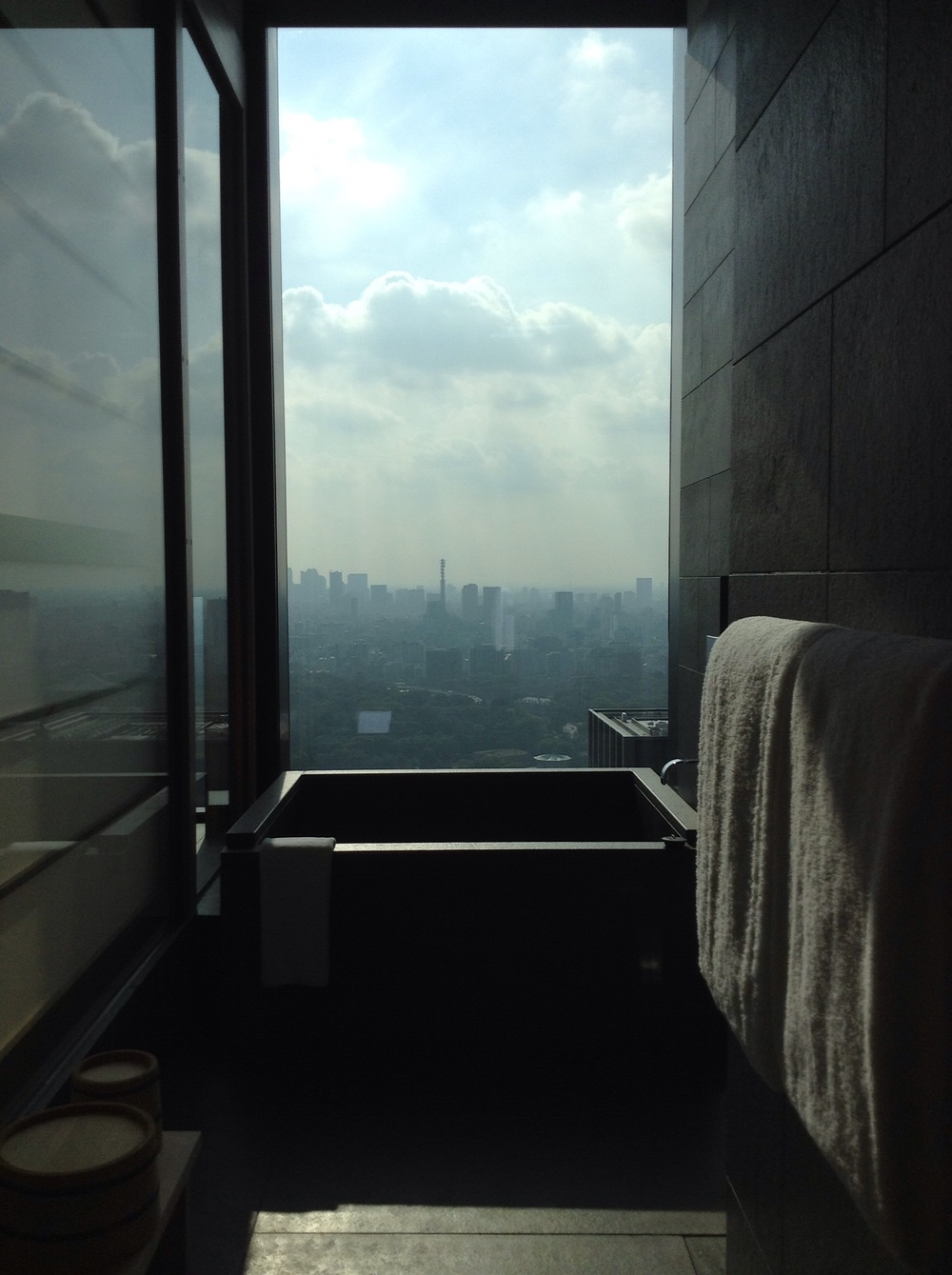 bathroom with view too