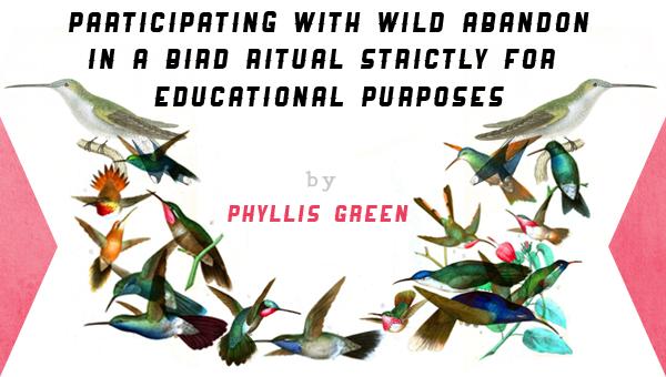 hummingbird-title.png