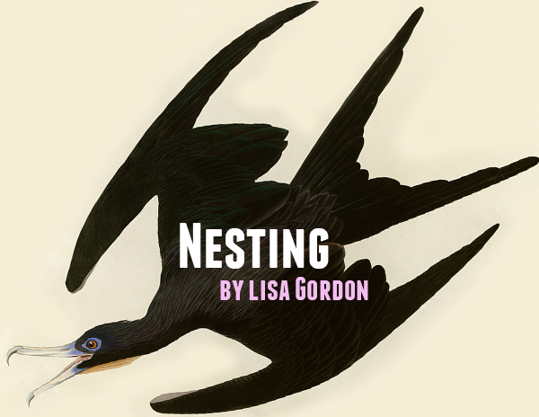 nesting.png