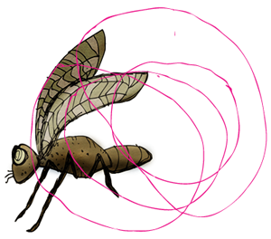 plumb-fly2.png