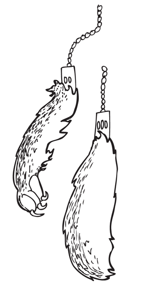 rabbits-foot.png