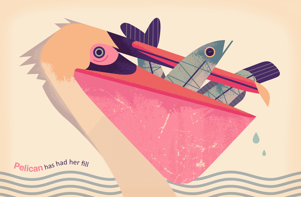 Bird-Search-Picture-Book-Owen-Davey-Illustration-Pelican_1000.jpg