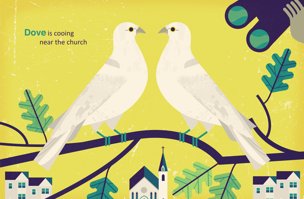 Bird-Search-Picture-Book-Owen-Davey-Illustration-Doves-Church_1000.jpg