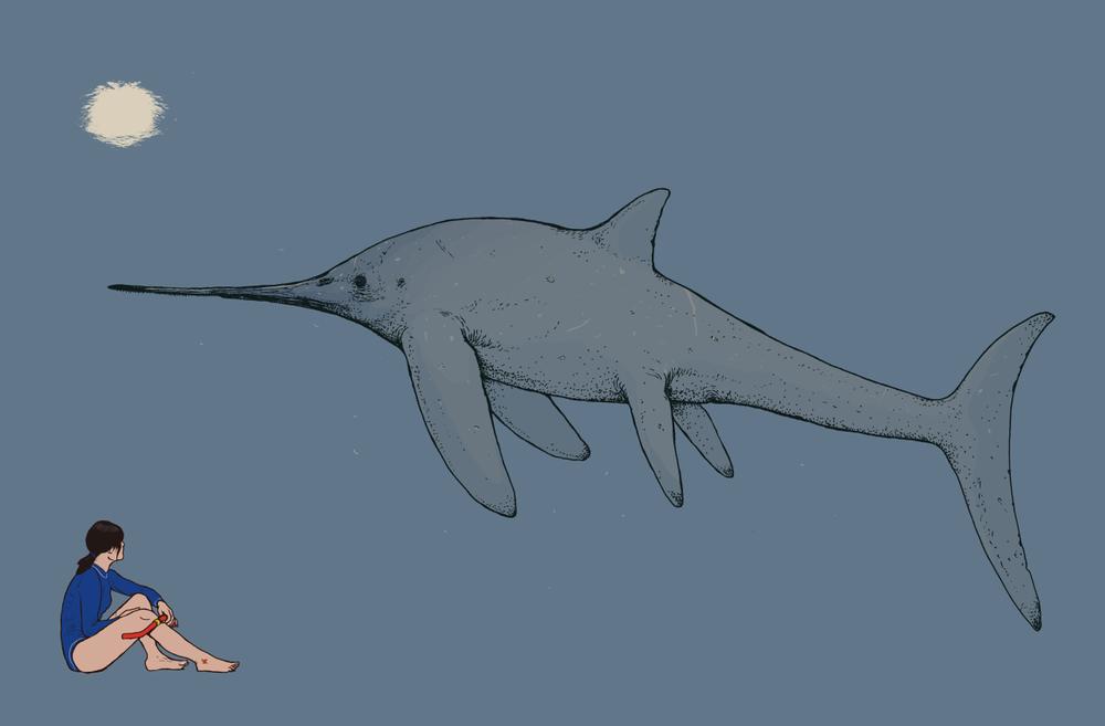 eurhinosaurus.png