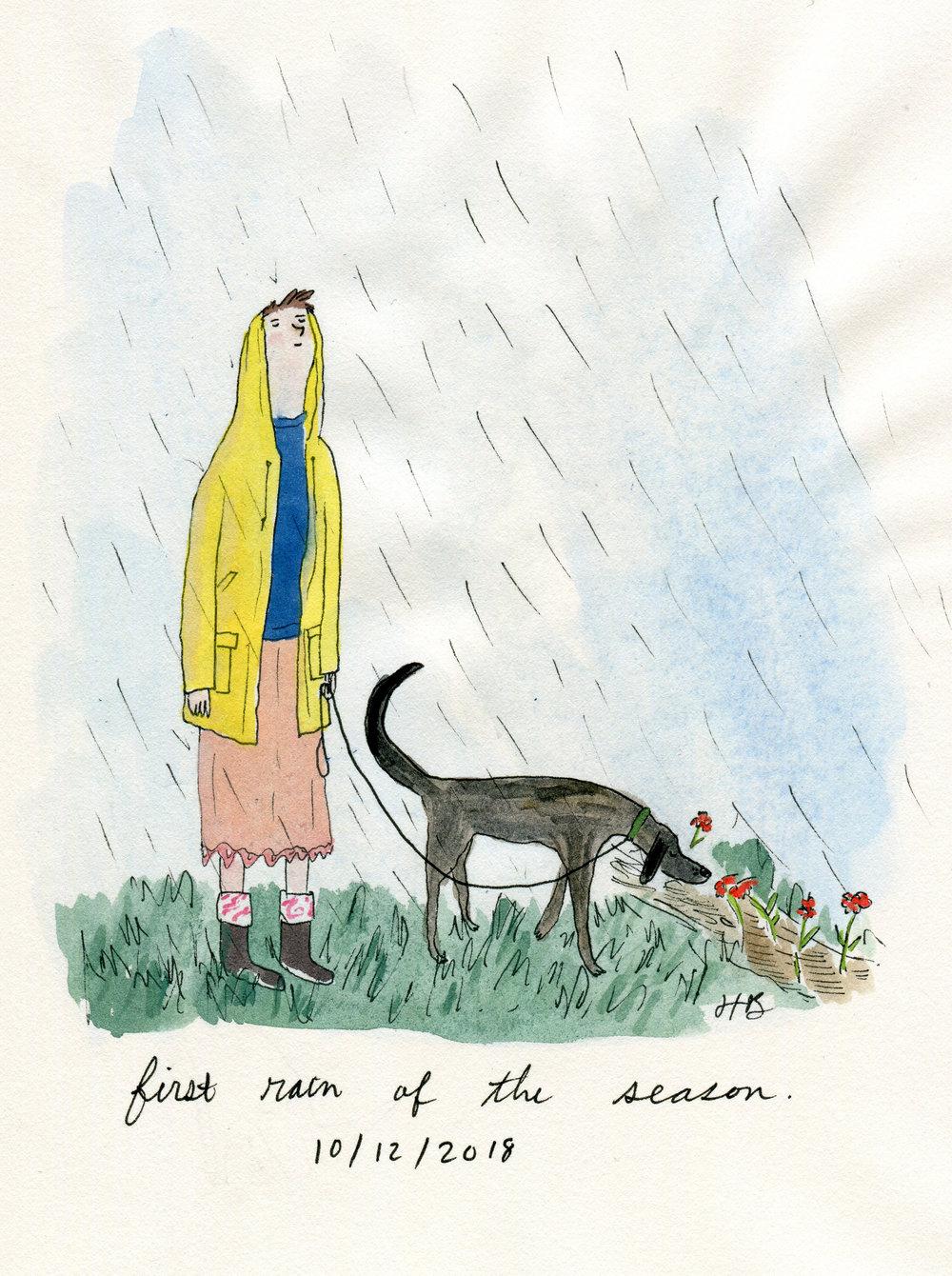 first rain.jpg
