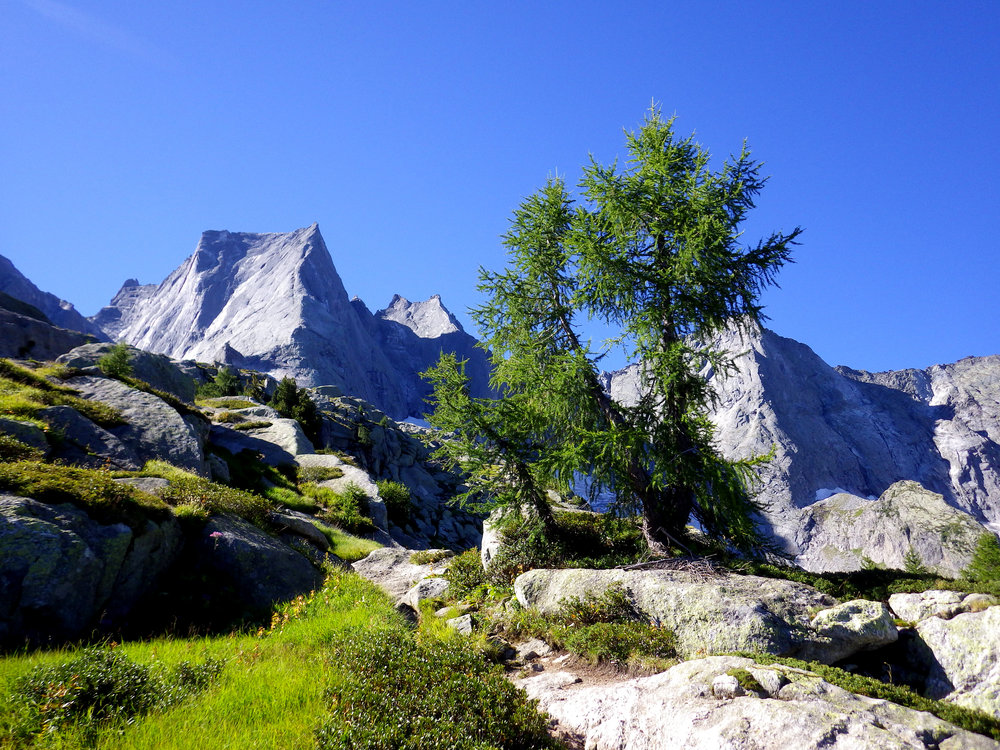 Approach to the Piz Badile