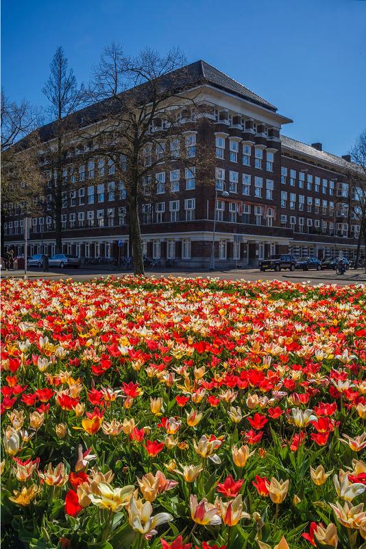 Minervaplein.jpg