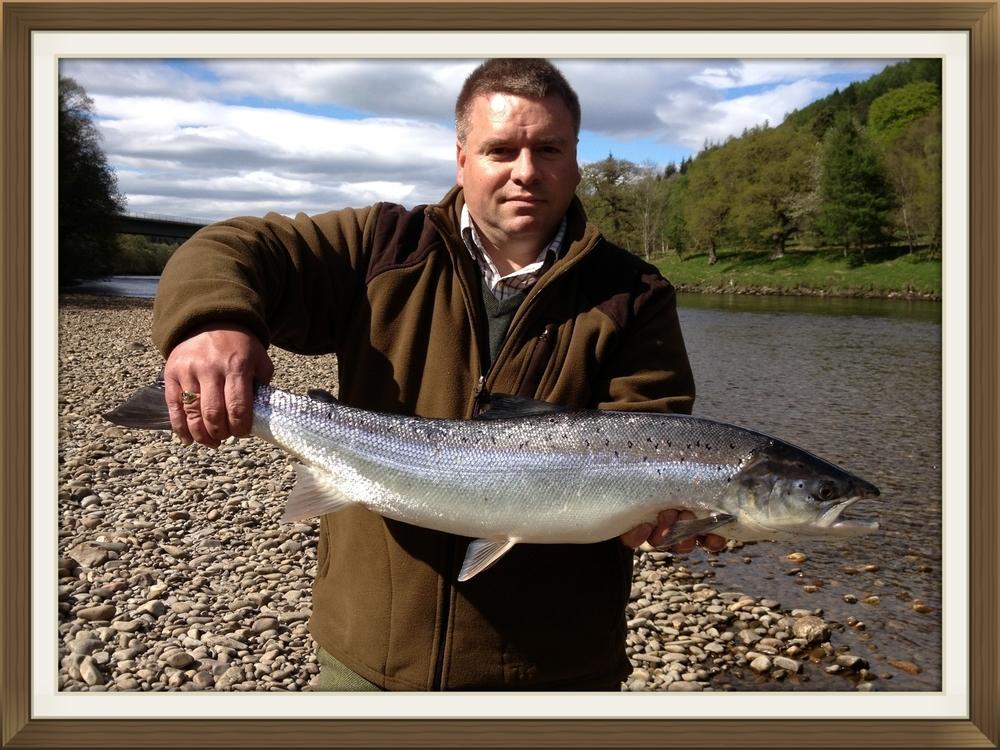 Scottish salmon fishing, river tay, fishing, tay, dunkeld, springer salmon, dalmarnock fishings.jpg