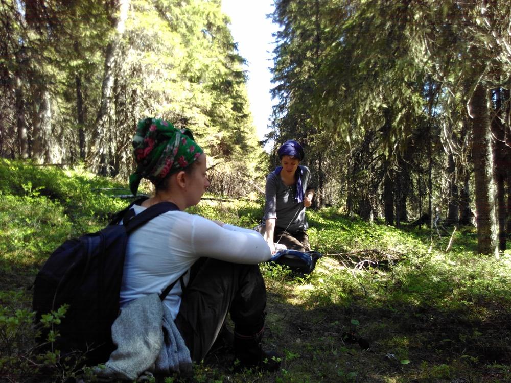 Viivi ja Isla sallitun ja kielletyn metsän rajalla.