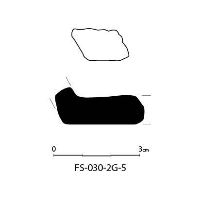FS-030-2G-5-01.jpg