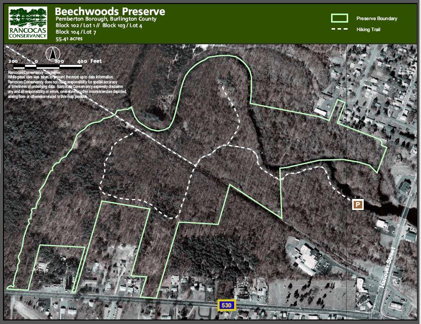 Beechwoods done.JPG