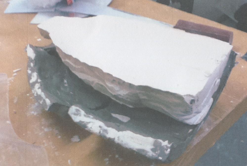 3. Plaster cast of this new interior void