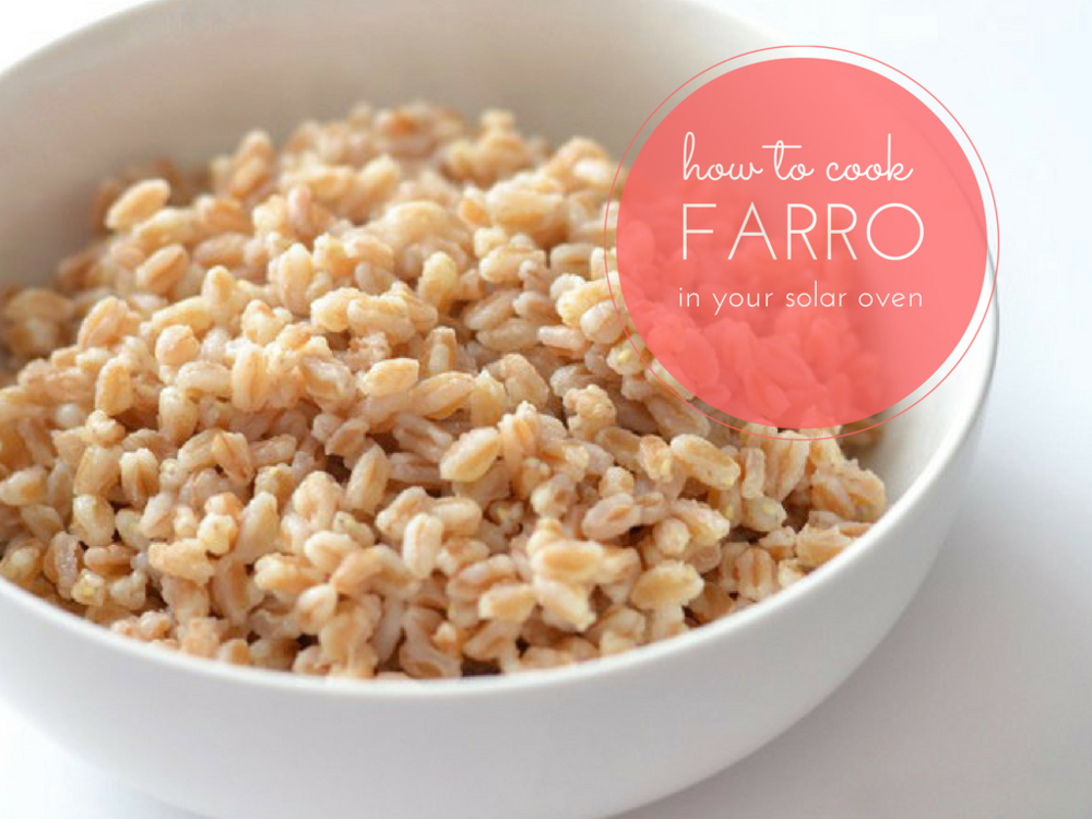 how to cook farro in a solar oven