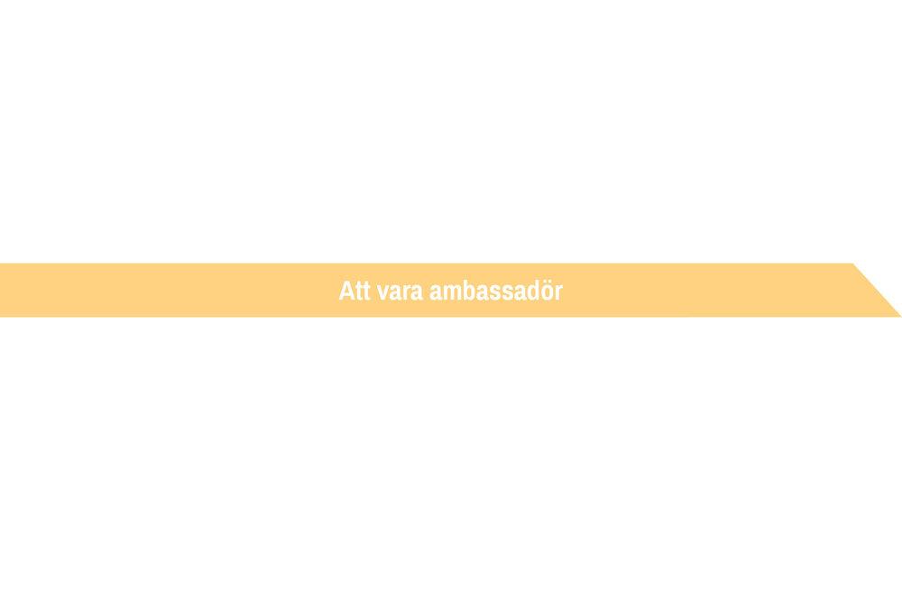 ambassadör.jpg