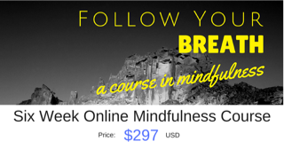 Hectic schedule? Try this online course to get support and powerful tools for well-being at your own pace. From the great folks at Austin Mindfulness Center.