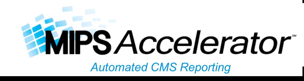 MIPS Accelerator