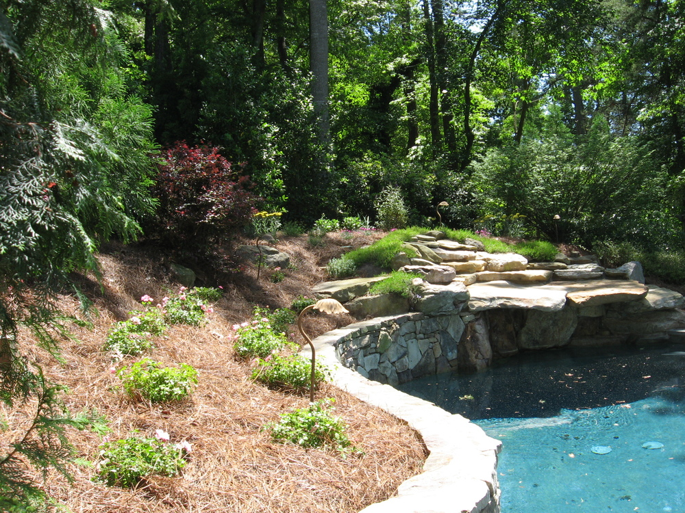 Pool Plantings- 3D Landscape Design Jamestown, NC