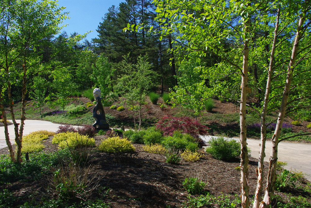 New Planting Renovation- High Point, NC