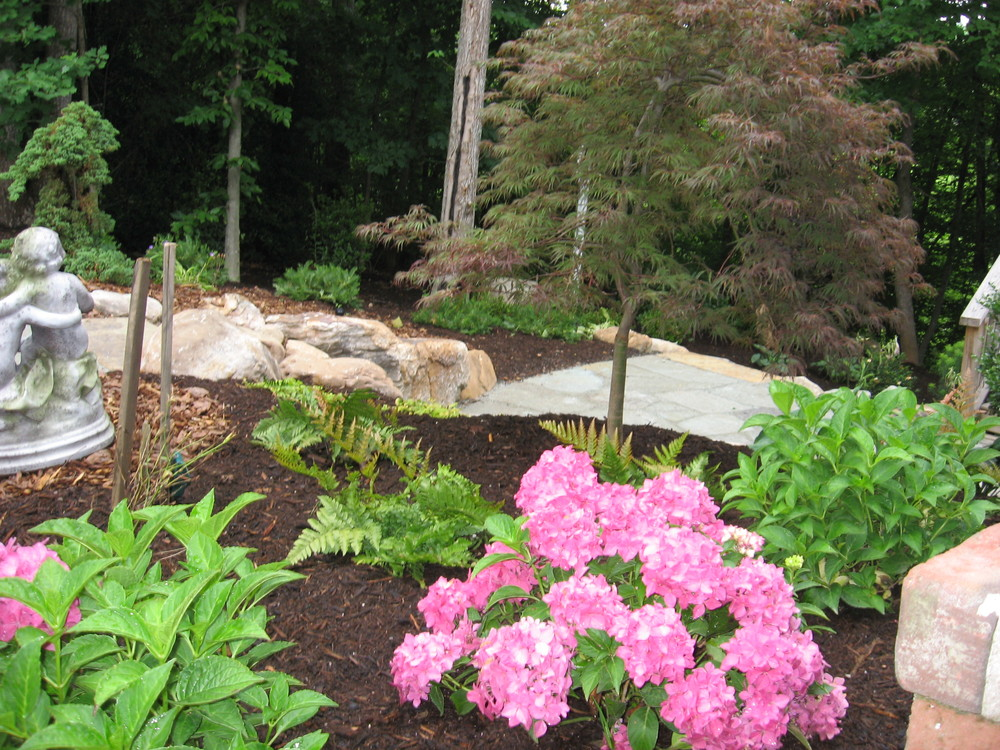 Plantings- 3D Landscape Design Oak Ridge, NC