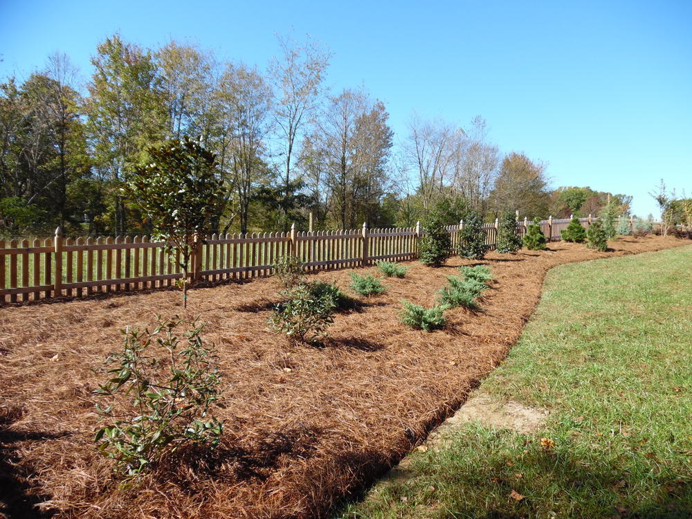 New Plantings- 3D Landscape Design Walkertown, NC