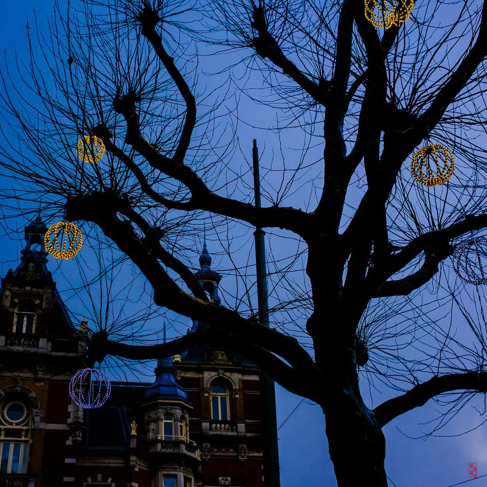 Christmas lights, Amsterdam.