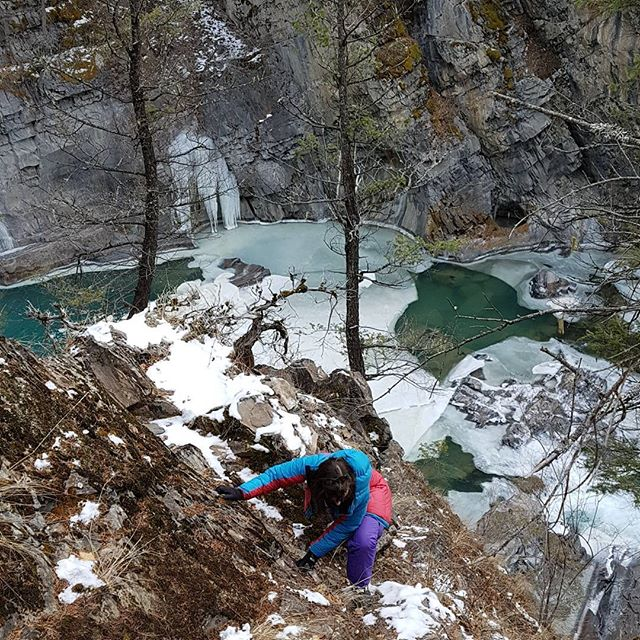 Adventures with my girl, while checking ice conditions in the canyon today. Such a magical place!  #iceclimbingimages #iceclimbing #bullrivercanyon #Elmatador #explorebc #thepowerofwater #sculpturedrocks