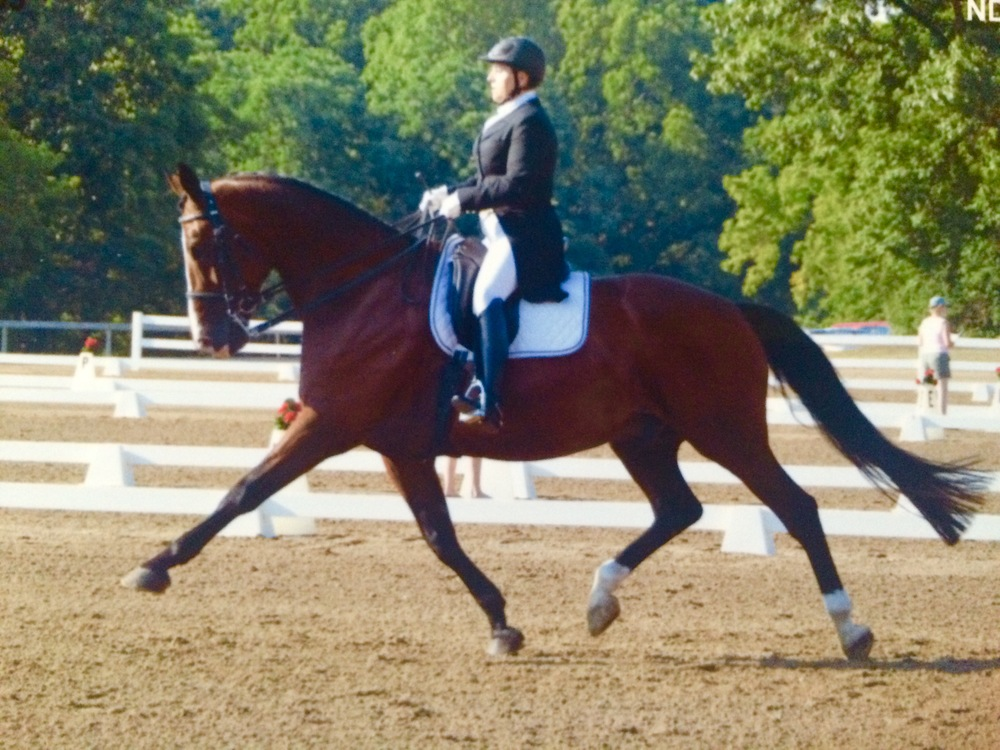 Dressage In Oxford