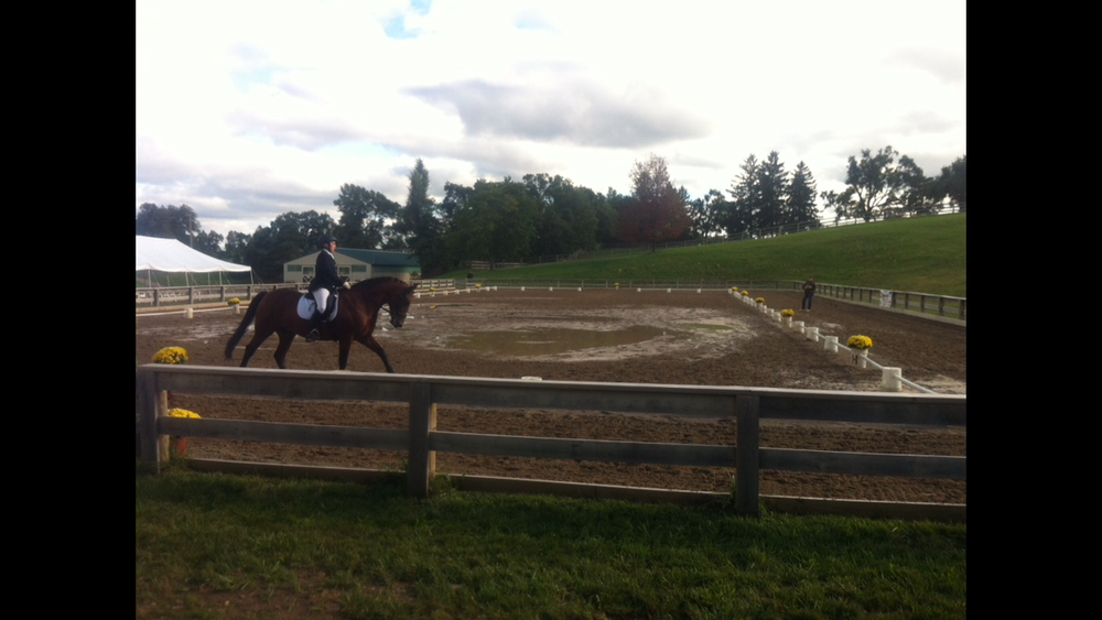 outdoor equestrian competition