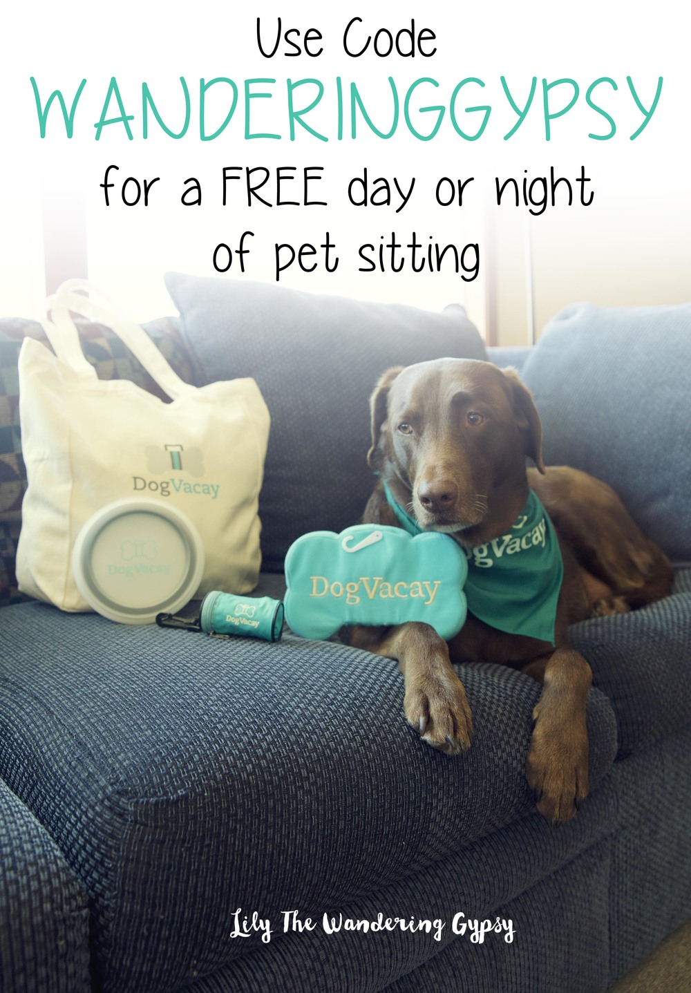 Cabbie + DogVacay   - Get a FREE day or night of Pet Sitting! Click the image to learn more!