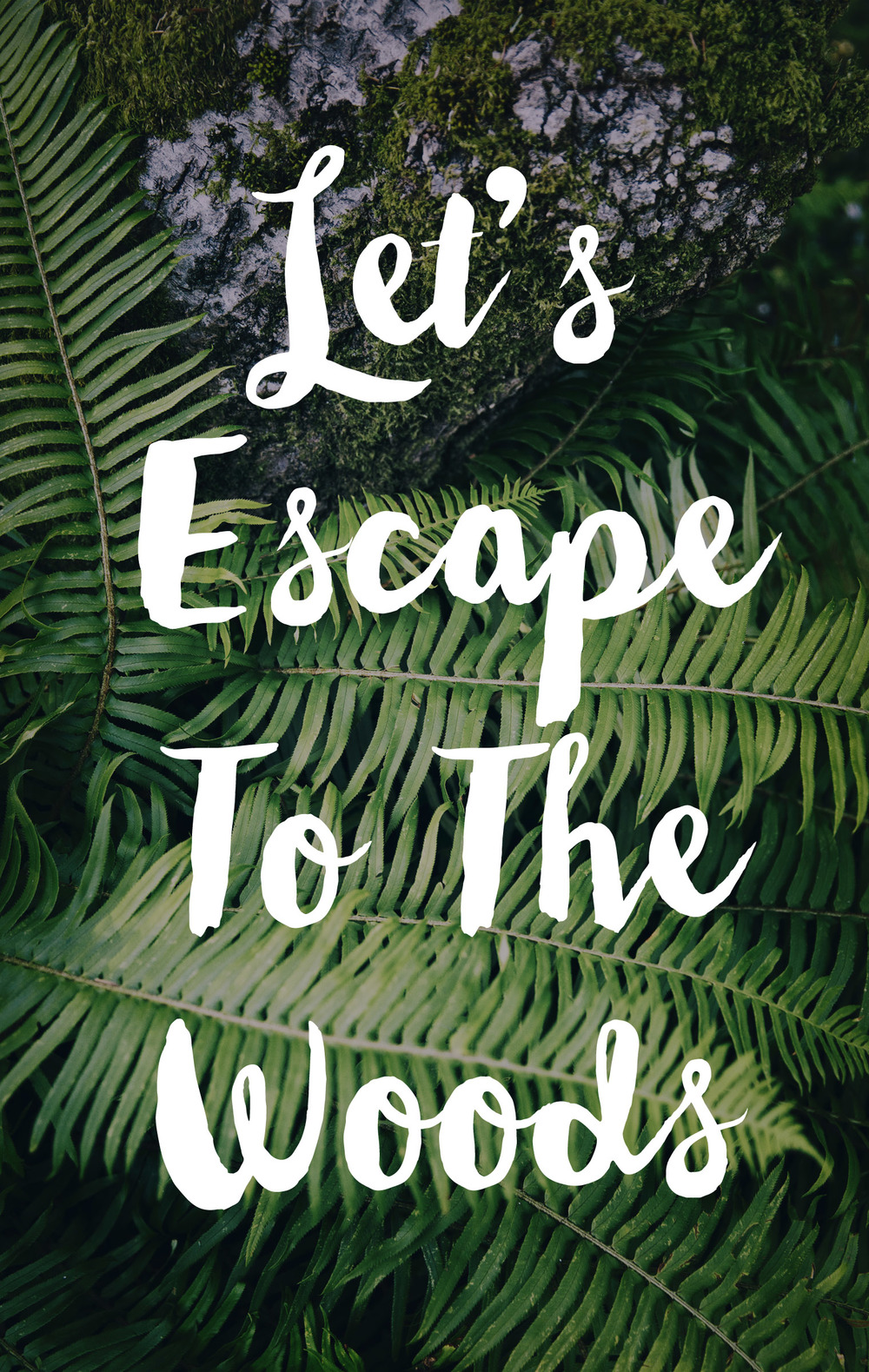 Let's Escape To The Woods!