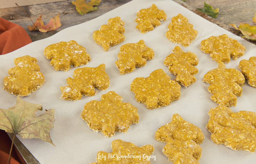 Nov 15,  · There are some vegan dog treats for purchase in the pet stores, but these Pumpkin & Peanut Butter Dog Treats are so easy to make and so much cheaper. On top of that, Chickpea goes crazy for the homemade treats/5(38).