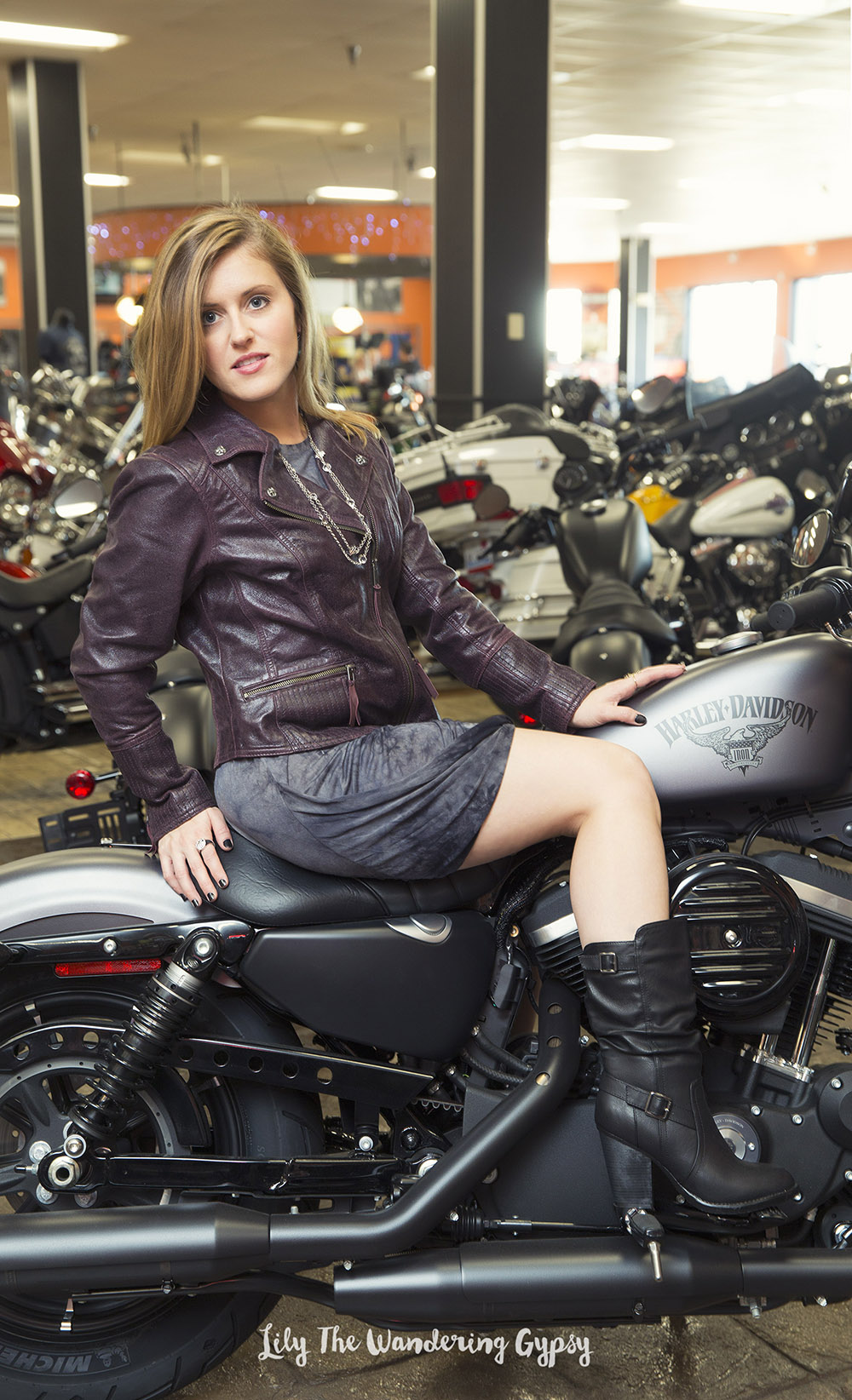 Lily The Wandering Gypsy + Harley-Davidson