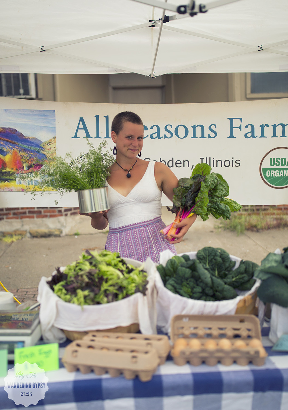 All Seasons Farm - All Local, All Organic