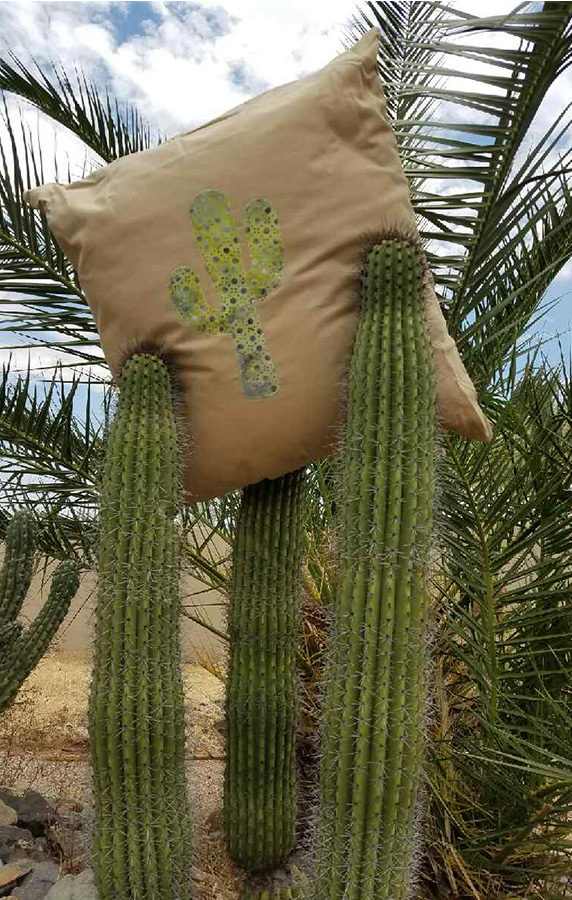 cactus pillow DIY
