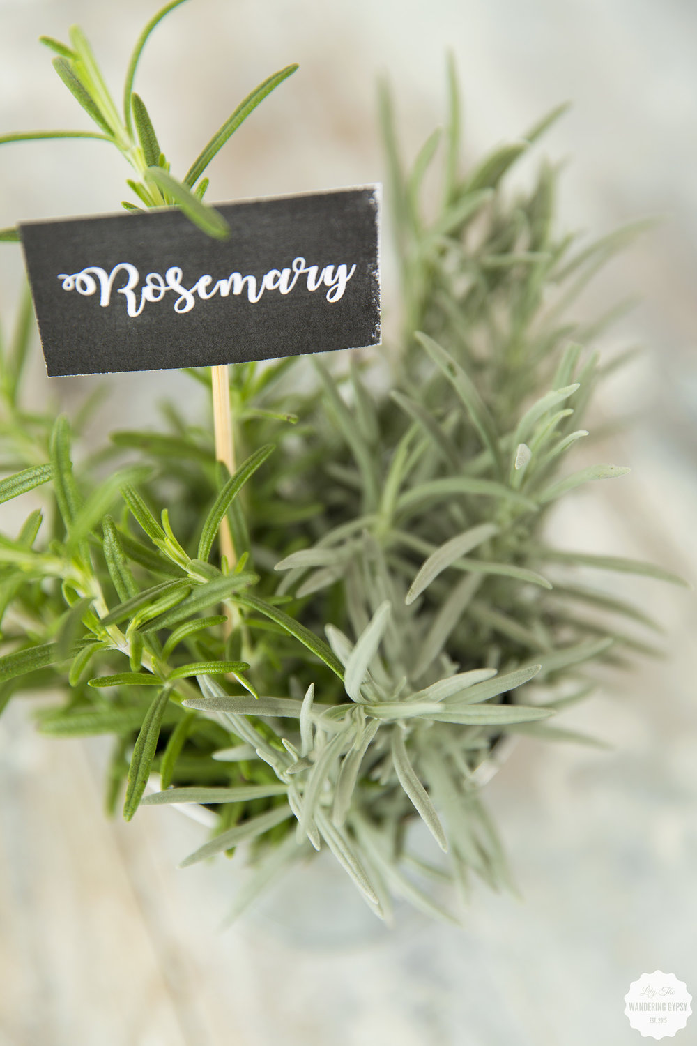 #WhatInconvenience - Cute DIY Herb Markers