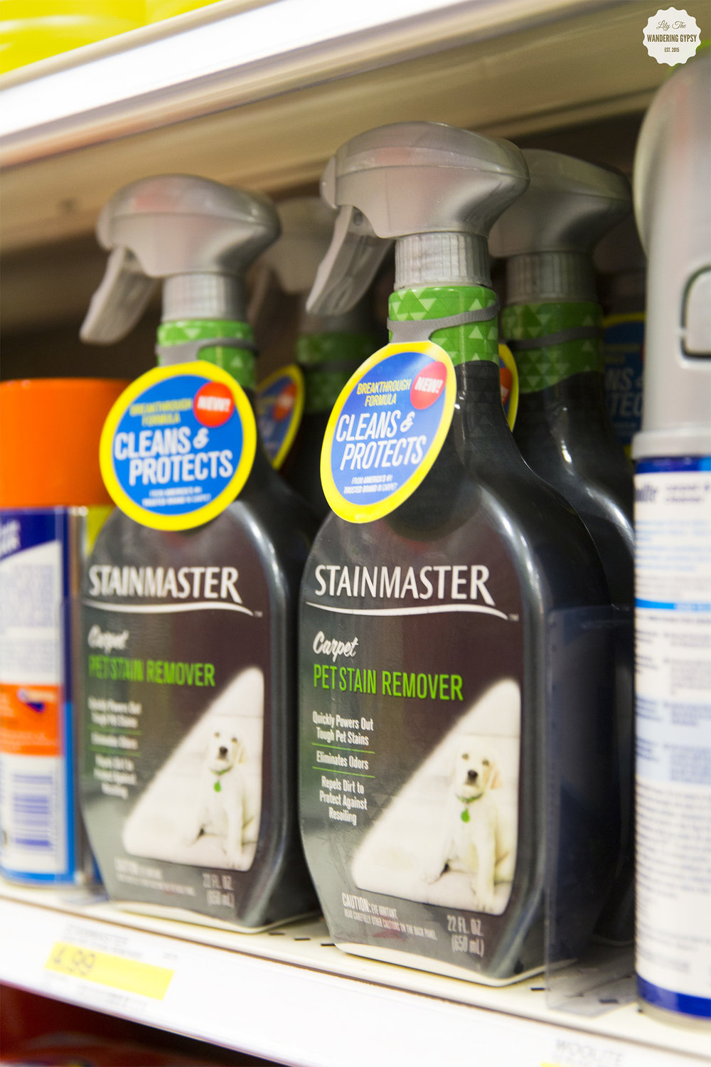 STAINMASTER™ Carpet Pet Stain Remover at Target