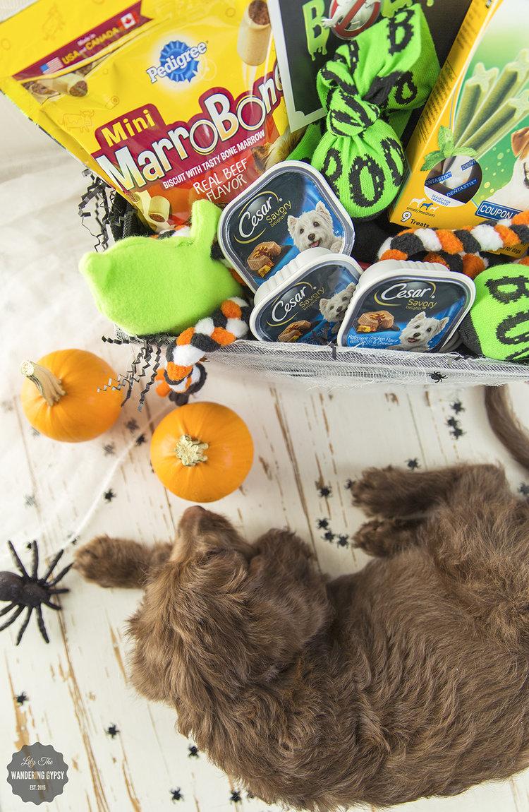 Halloween Boo Basket
