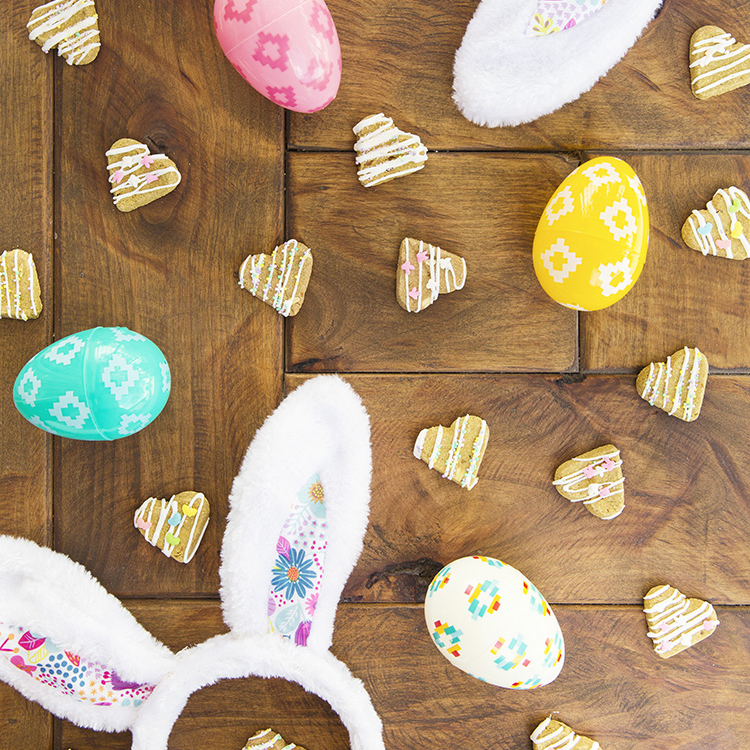 Spring DIY Decorated Dog Treats
