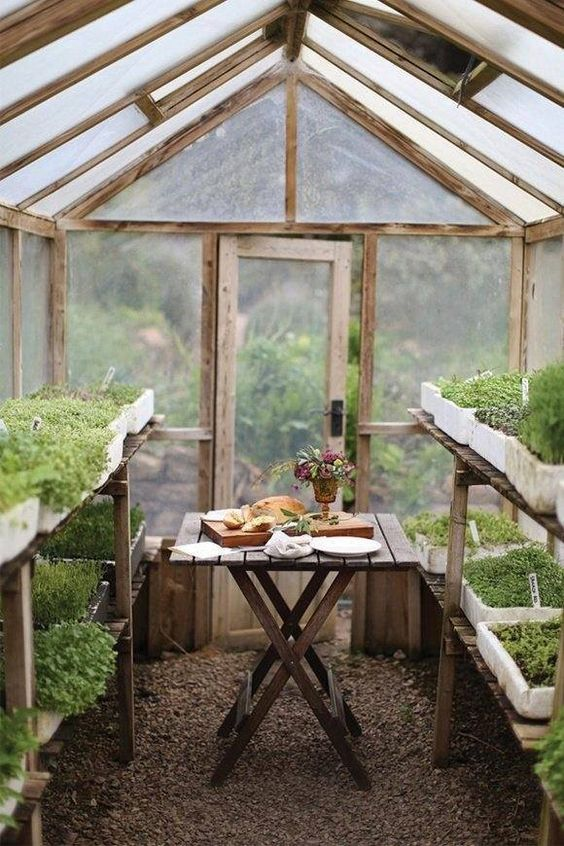Eating In A Greenhouse