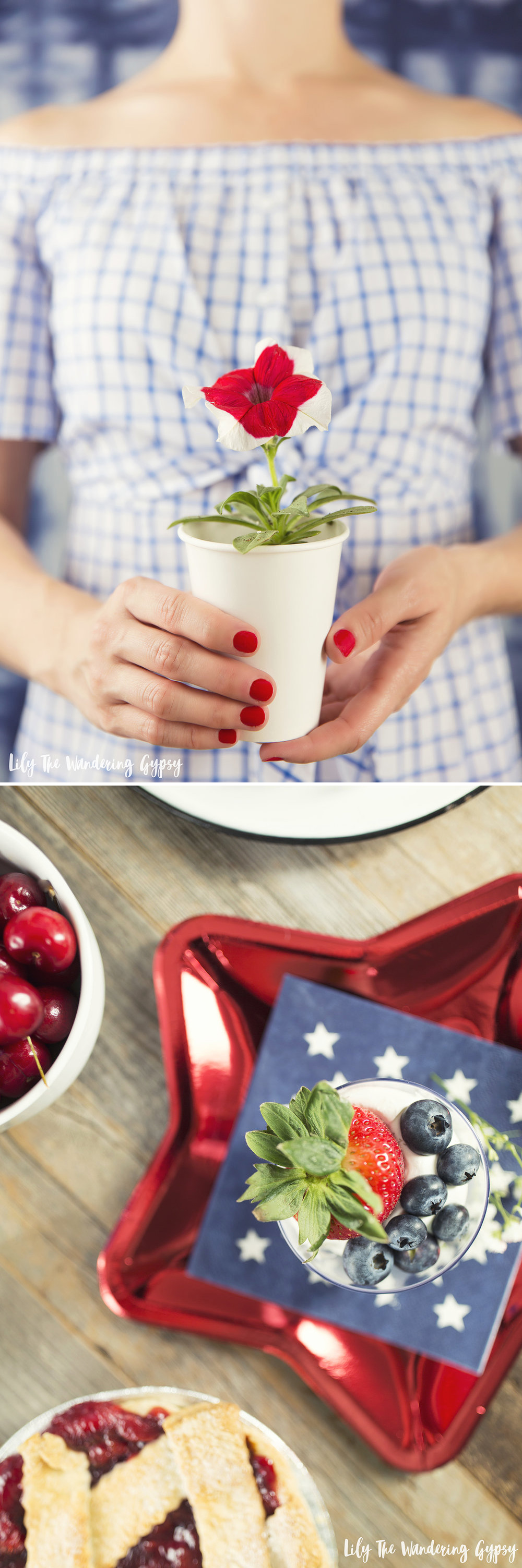 Memorial Day + 4th of July Party Ideas