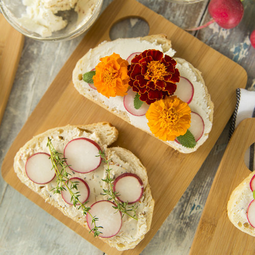Goat Cheese + Radish Toast