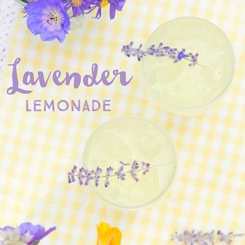 Lavender Lemonade - Get The Recipe