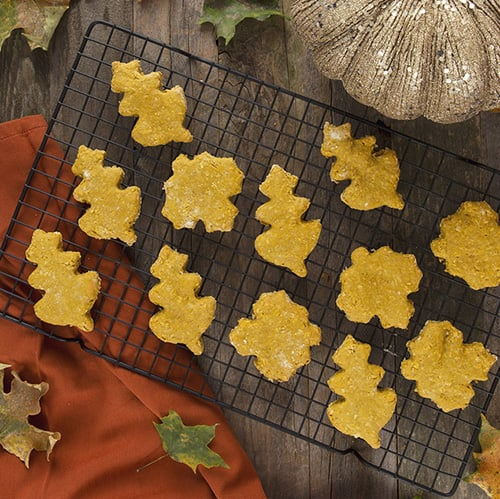 Organic Pumpkin Dog Treats - Get The Recipe