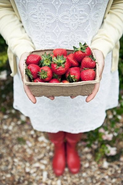 It's Strawberry Picking Season